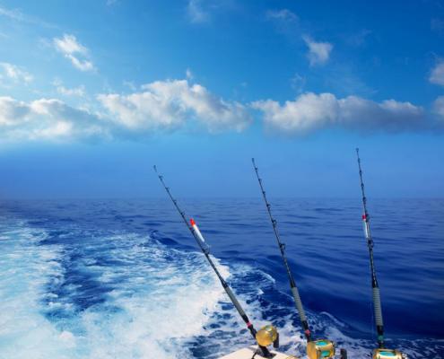 Fishing Trip In Cabo San Lucas