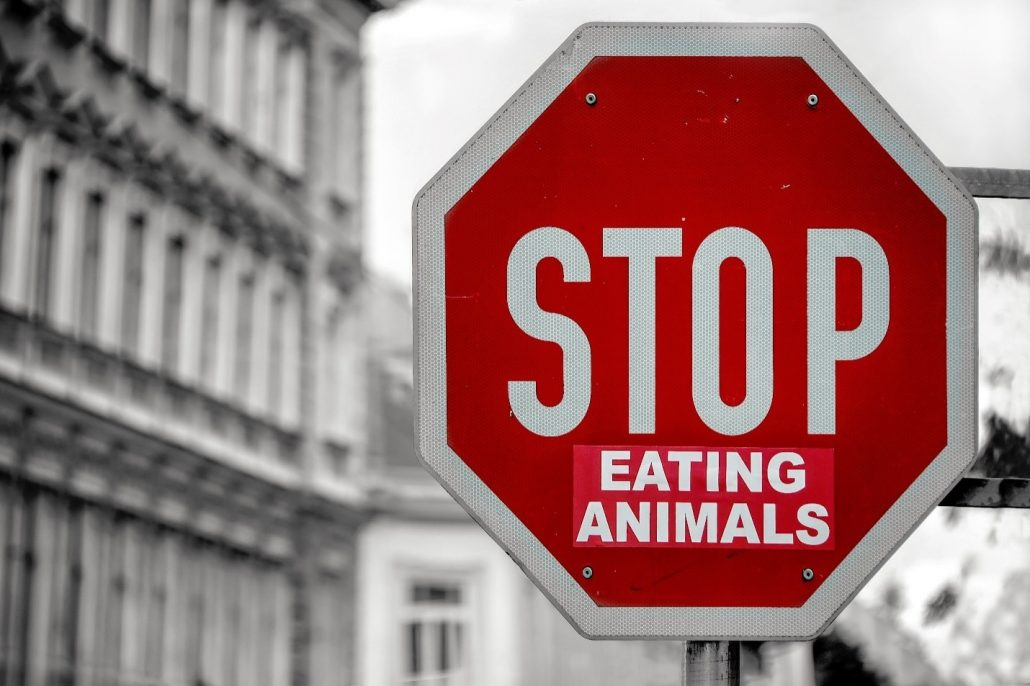 A sign stating 'Stop Eating Animals'